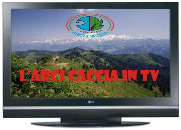 Arci_tv