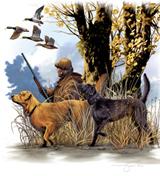 cacciatore acquatici